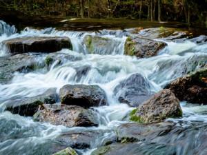 Ein Bach mit Steinen und fliessendem Wasser. Landschaft erleben in der Natur.